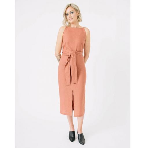 PCP Axis Dress.jpg